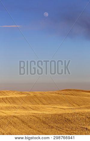 Prairie Rural Agriculture