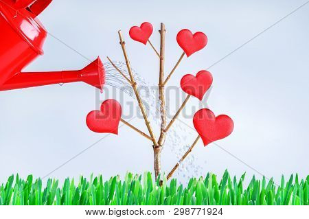 Tree Of Love, Hearts Grow On The Branches. Growing Love And Relationship Concept.