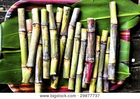frische sugarcanes