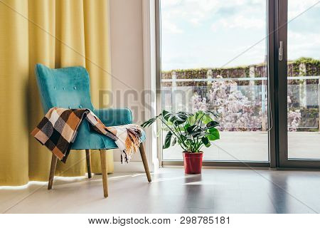 Conceptual Light  Interior Of Living Room With Blue Armchair And Brown Blanket, Monstera Plant In Re