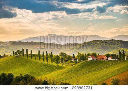 South Styria Vineyards Landscape, Near Gamlitz, Austria, Eckberg, Europe. Grape Hills View From Wine