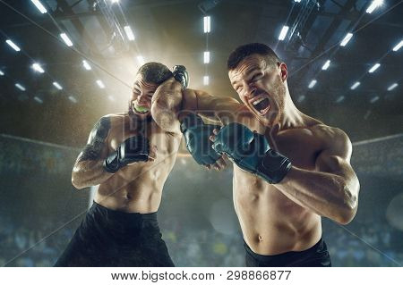 Winner Screaming. Two Professional Fighters Posing On The Sport Boxing Ring. Couple Of Fit Muscular