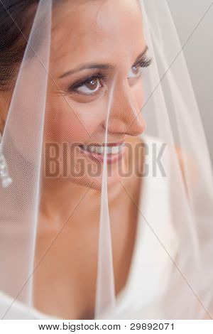 Beautiful Bride Looking Through Her Veil And Smiling