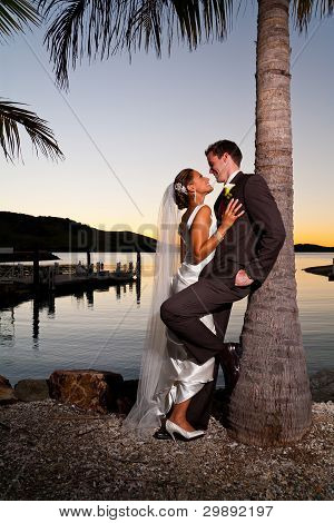 Newlyweds Embracing Under A Palm Tree At Sunset