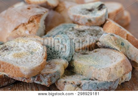 Moldy Bread Slices On Wooden Cutting Board.moldy Inedible Food.