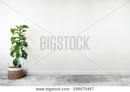 White empty room with a plant wall mockup