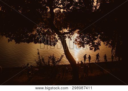 Relaxation On The Beach, Amazing Sunset, Sunset Near The Water, Sunset Throw The Trees People Near T