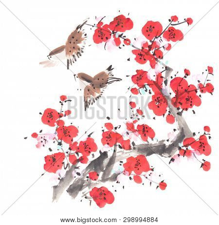 Chinese painting of flowers, plum blossom and two birds on white background.