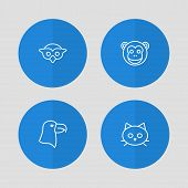 Set of 4 animal icons line style set. Collection of aquila, tomcat, ape and other elements. poster