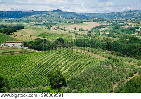 Amazing Springtime Colorful Landscape In Tuscany. Green Fields And Vineyards With Olive Trees In Tus