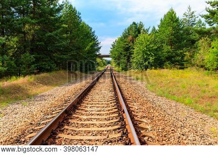 Railroad Track Through A Green Pine Forest