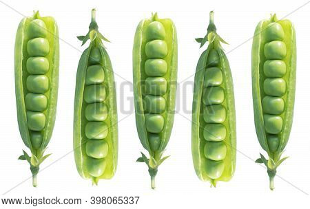 Set Fresh Green Peas With Beans Isolated On White Background. Sweet Peas In Close Up Isolated Over W