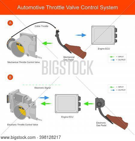 Automotive Throttle Valve Control System. Illustration For Explain Different Working Of Mechanic Thr