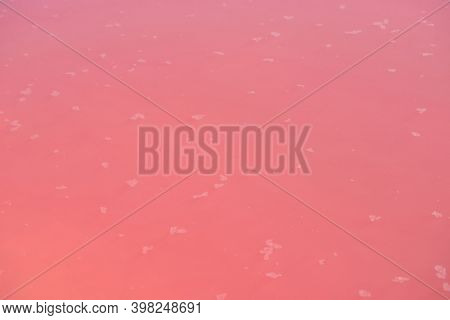 Extremely salty pink lake with crystals of salt, colored by microalgae with crystalline salt depositions in Torrevieja, Spain