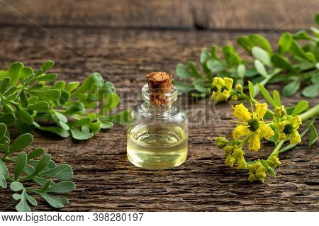 Essential Oil Bottle With Blooming Common Rue Or Ruta Graveolens Twigs