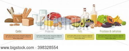 Main Food Groups - Macronutrients. Carbohydrates, Fats, Proteins And Fructose. Vector Infographic Il