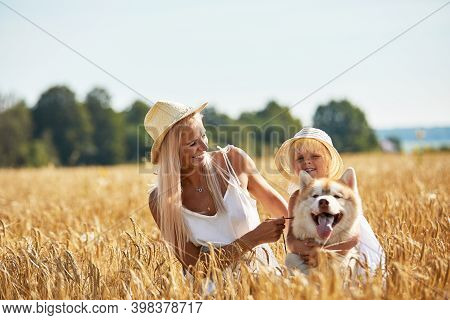 Cute Baby Girl With Mom And Dog On Wheat Field. Happy Young Family Enjoy Time Together At The Nature