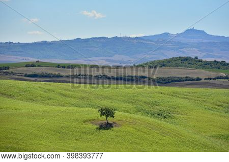 San Quirico d\'Orcia, Italy - September 3rd 2020. Late summer landscape in Val d\'Orcia near San Quirico d\'Orcia, Siena Province, Tuscany, Italy