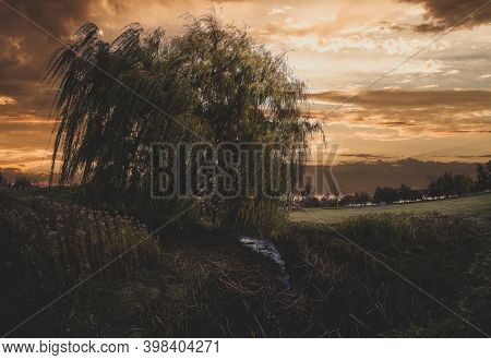 Weeping Willow Tree Near A Creek During A Vibrant Sunset