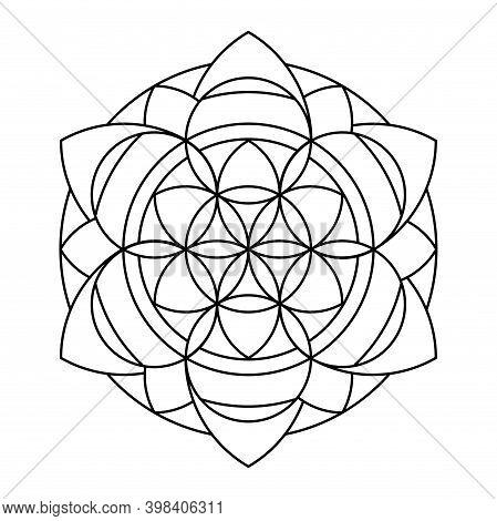 Lace Flower Of Life Circle Vector Mandala Coloring Book