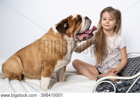 Two Friends, A Girl And A Dog, Are Sitting Together On The Bed. The Girl Is Petting The Dog. A Breed