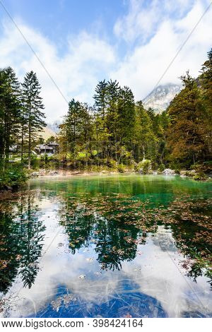 Travel to Slovenia. Cloudy foggy day. Julian Alps. Shallow lake with glacial greenish water, covered with yellow and orange fallen leaves. Autumn forest and cloudy sky are reflected in the lake
