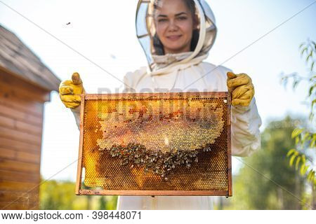 Young Female Beekeeper Hold Wooden Frame With Honeycomb. Collect Honey. Beekeeping Concept.
