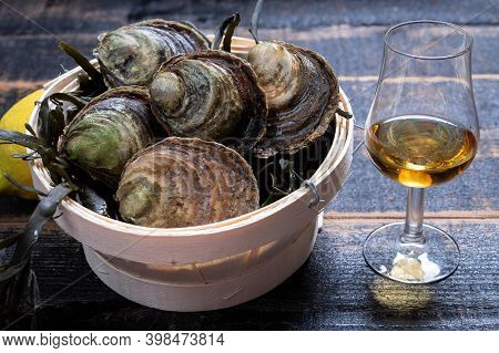 Food And Drink Pairing, Fresh Raw European Flat Oyster Grown In Brittany In Belon River, France And