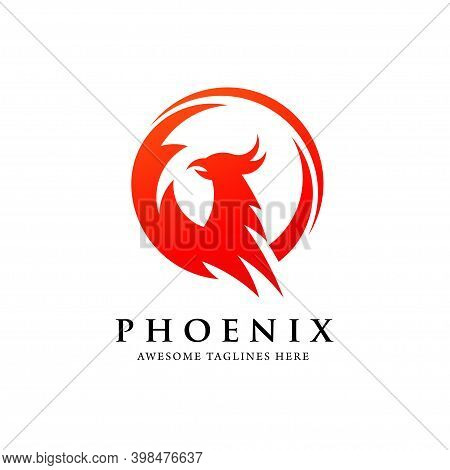 Phoenix Circle 0919-07.eps