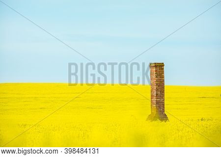 Brick Chimney Remaiins Of Old Farm House Rises From Golden Canola Fields Flowering In Spring.  Copy