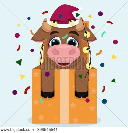 Symbol Of The Year 2021. A Small Bull Came Out Of The Gift Box. Happy New Year Greeting Card.chinese