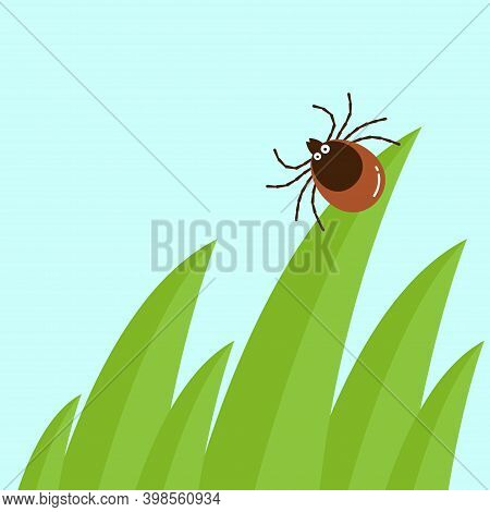Cartoon Mite In The Tall Green Grass Flat Vector Illustration, Mite Hiding In The Grass, Tick-borne