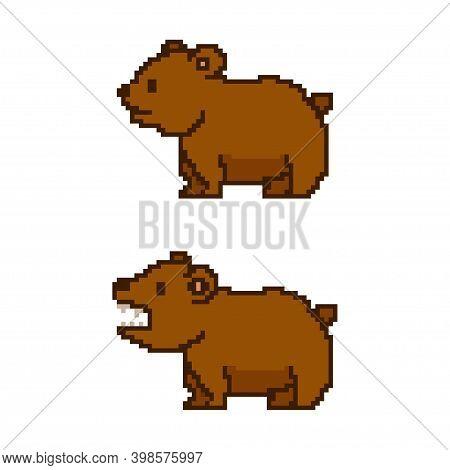 Pixel Bear Vector Game Art Flat Icon.