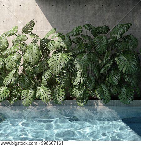 Backyard swimming pool with vertical garden, 3D illustration, rendering.