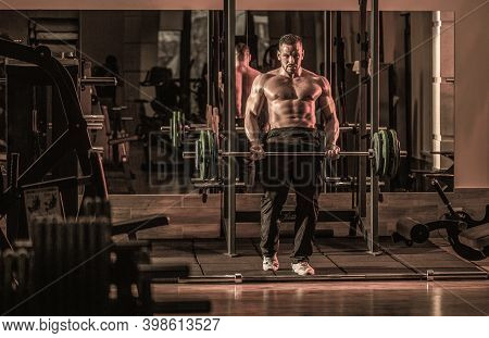 Bodybuilder Athletic Man With Six Pack, Perfect Abs, Shoulders, Biceps, Triceps, Chest.
