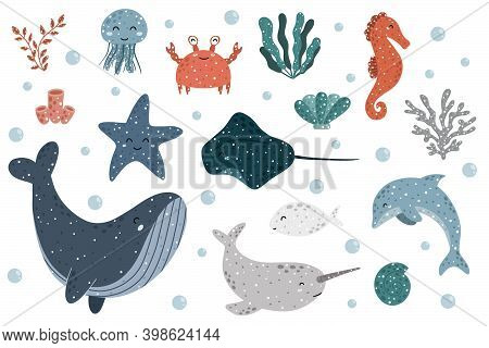 Cute Collection Of Sea Animals With:  Jellyfish, Crab, Seaweed, Marine Polyps, Seahorse, Starfish, C