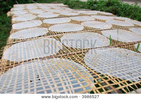 Drying Rice Paper