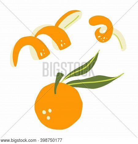 Mandarin Branch. Exotic Tropical Orange Citrus Fresh Fruit, Whole Juicy Tangerine With Orange Peel V