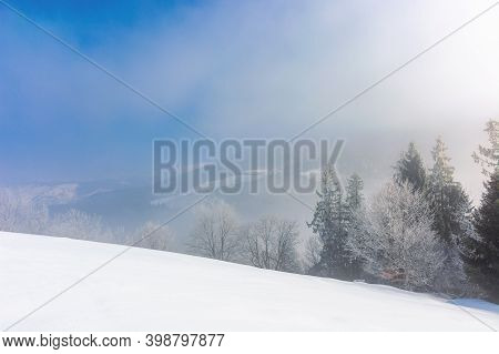 Trees In Mist On A Snow Covered Hill. Fairy Tale Winter Mountain Scenery. Frosty Weather On A Sunny