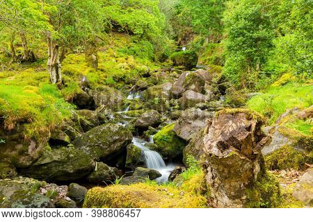 Tiny waterfall in the Irish countryside surrounded by trees and vegetation, in County Kerry, Ireland.