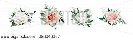 Vector, Watercolor Style Floral Bouquet. Blush Peach, Dusty Pink, Ivory White Rose Flowers, Eucalypt