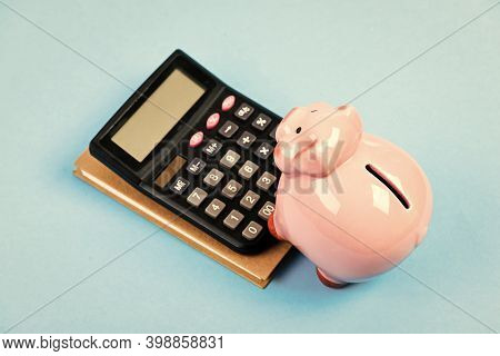 Economics And Finance. Piggy Bank Pink Pig And Calculator. Business Administration. Calculate Profit