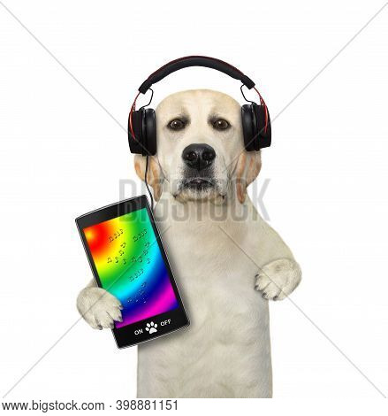 A Dog In Headphones With A Smartphone Is Listening To Music. White Background. Isolated.