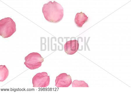 Blurred A Group Of Sweet Red Rose Corollas On White Isolated Background With Copy Space