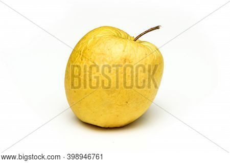A Picture Of An Ordinary Green Golden Delicious Apple, Without Modifications The Apple Is Old, Dry A