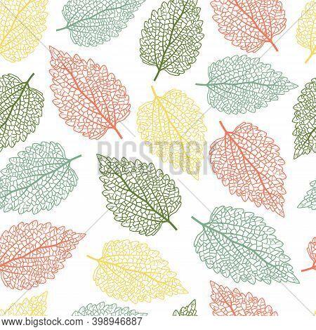 Elegant Trendy Seamless Vector Floral Ditsy Pattern Design Of Exotic Stinging Nettle Leaves. Trendy