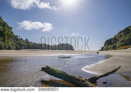 Shallow Stream With Old Log Across Low Tide Beach Looking Into Sun In Idyllic Summer Beach Scene At