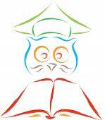 smart owl funny cartoon vectorial sketch illustration poster