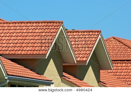 Orange Roof Tops