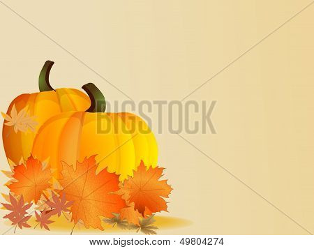 Pumpkins with leaves. Autumn background. Vector.